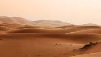 desert-silence