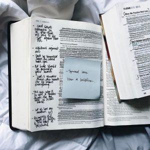 Is The Bible Good News Or Bad News? – Fr. Mark